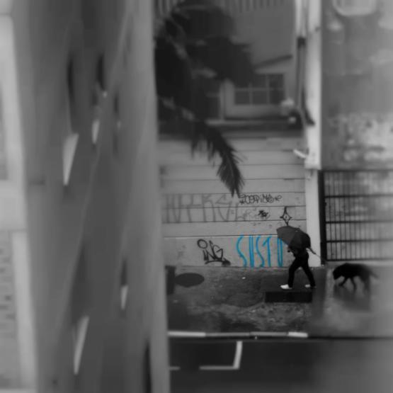 album_afetivo_sao_paulo_v2_4